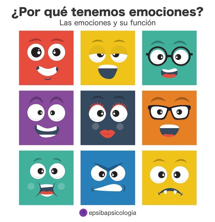 funcion de las emociones