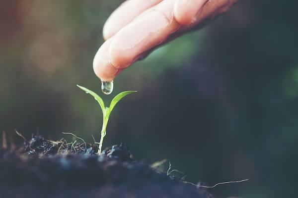 autoestima y crecimiento personal